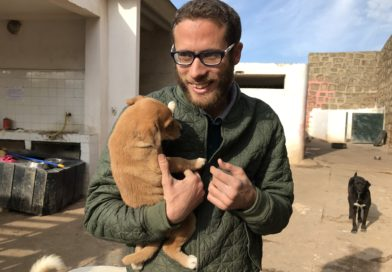 Ahead of the Pack: Ahmed Tazi runs Rabat's only animal rescue